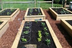 box-garden2