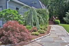 shrubs800